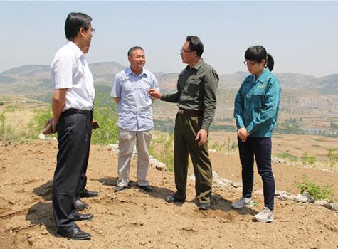 领导考察小米种植基地土地.jpg