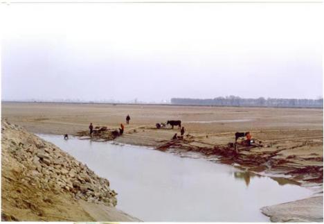 黄河20年不断流勾勒出东营绿色发展新画卷